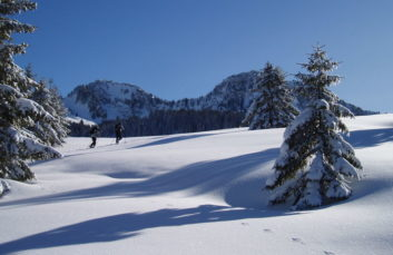 Snowshoeing and walking itinerary : Boucle de Dran